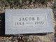 Jacob F. Alt
