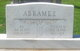 Pauline Grace <I>Waller</I> Abrames