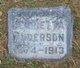 Aase Henrietta <I>Ruud</I> Anderson