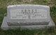 Grover Cleveland Abney