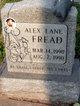 Profile photo:  Alex Lane Fread
