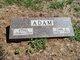 Carl J Adam