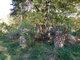 Allcorn-Dumsday Cemetery
