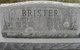 Walter Claiborne Brister