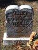 Profile photo:  Hosea Chandler