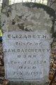"""Elizabeth """"Betsy"""" <I>Gorrell</I> Daugherty"""