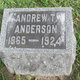 Andrew T Anderson
