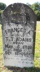 Frances Ann <I>Porch</I> Adams