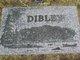 Profile photo:  Louis Albert Dibley, Jr