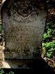 Daniel Boone Dillard