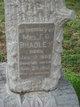 """Frances Ophelia """"Fannie"""" <I>Pierpont</I> Bradley"""