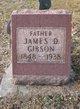 James D. Gibson