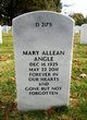 Profile photo:  Mary Allean Angle