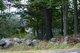 Batchelder Cemetery