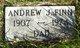 Profile photo:  Andrew J Finn