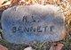 Profile photo:  A. L. Bennett