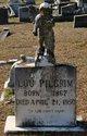 Frances Lou <I>Wilcox</I> Pilgrim