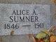 Profile photo:  Alice Ann <I>Clayton</I> Sumner