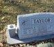 Gordon R. Taylor