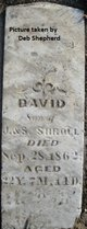 David Shroll