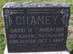David Henry Chaney