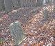 Abbott Cemetery  140
