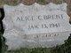 Profile photo:  Alice C Brent