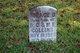 Horace B Collins