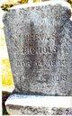 Minerva S. <I>Shook</I> Nichols
