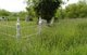 Alford S. Mallory Memorial Cemetery