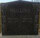 Peter Hall Mullins