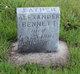 Profile photo: Rev Alexander Bennett