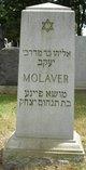 Alec Molaver