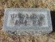 Vernon E Arnold