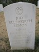 Ray Ellsworth Lemon