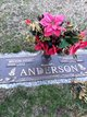 Profile photo:  Leila Virginia <I>Jones</I> Anderson