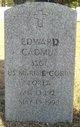 Edward Cadmus