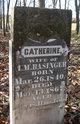 Catherine <I>Wilson</I> Basinger