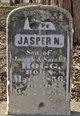 Jasper N Hogg
