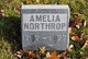 Profile photo:  Amelia Northrop