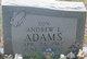 Andrew L. Adams