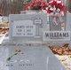 James Otto Williams