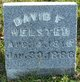 Profile photo:  David F. Welsted