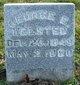 Profile photo:  George E. Welsted