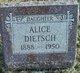 Profile photo:  Alice Dietsch