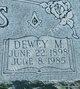 Profile photo:  Dewey McKinley Sevits