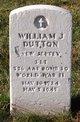 William J Dutton
