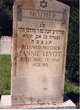 Fannie <I>Palonovsky</I> Levitt