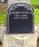 Profile photo:  Amerigo Pacelli
