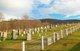 Beverage Family Cemetery